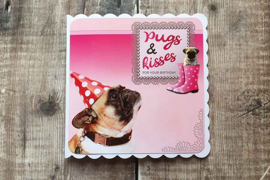 Handmade pug and french bulldog card