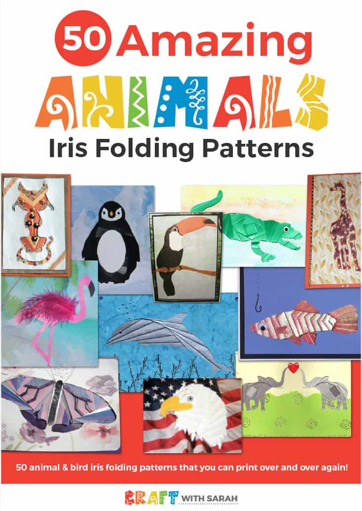Animal iris folding patterns