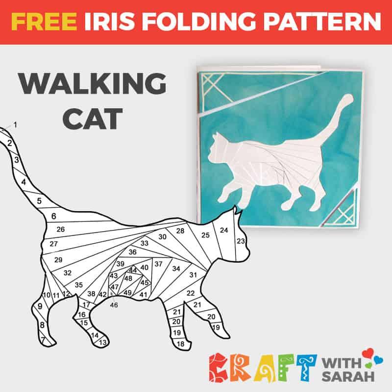 Cat Iris Folding Pattern