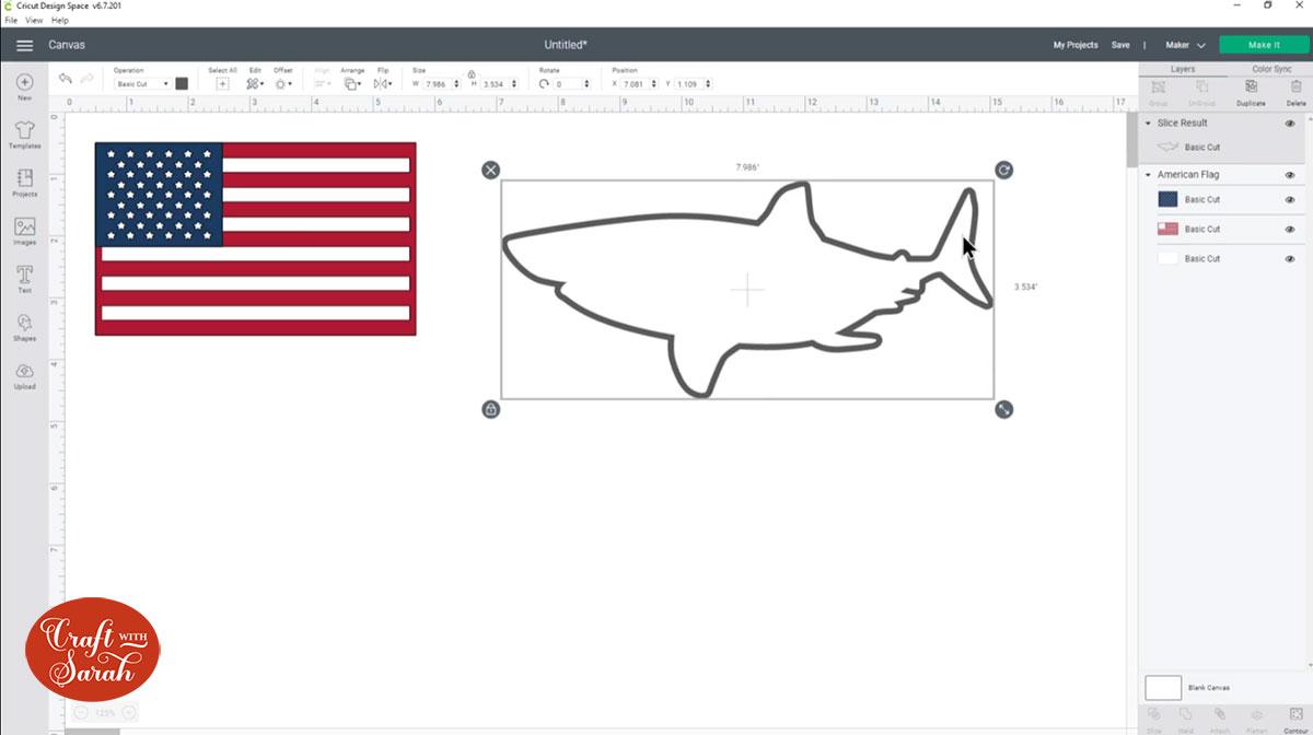 Shark outline