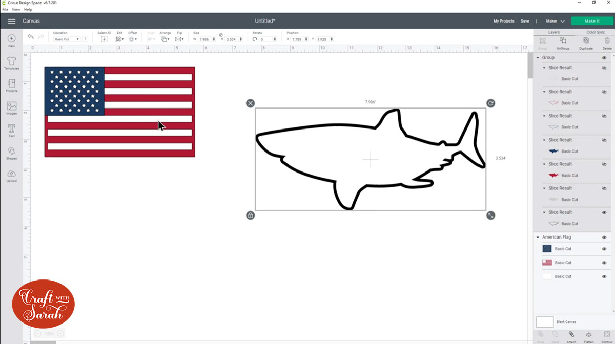 All shark layers hidden apart from the black outline