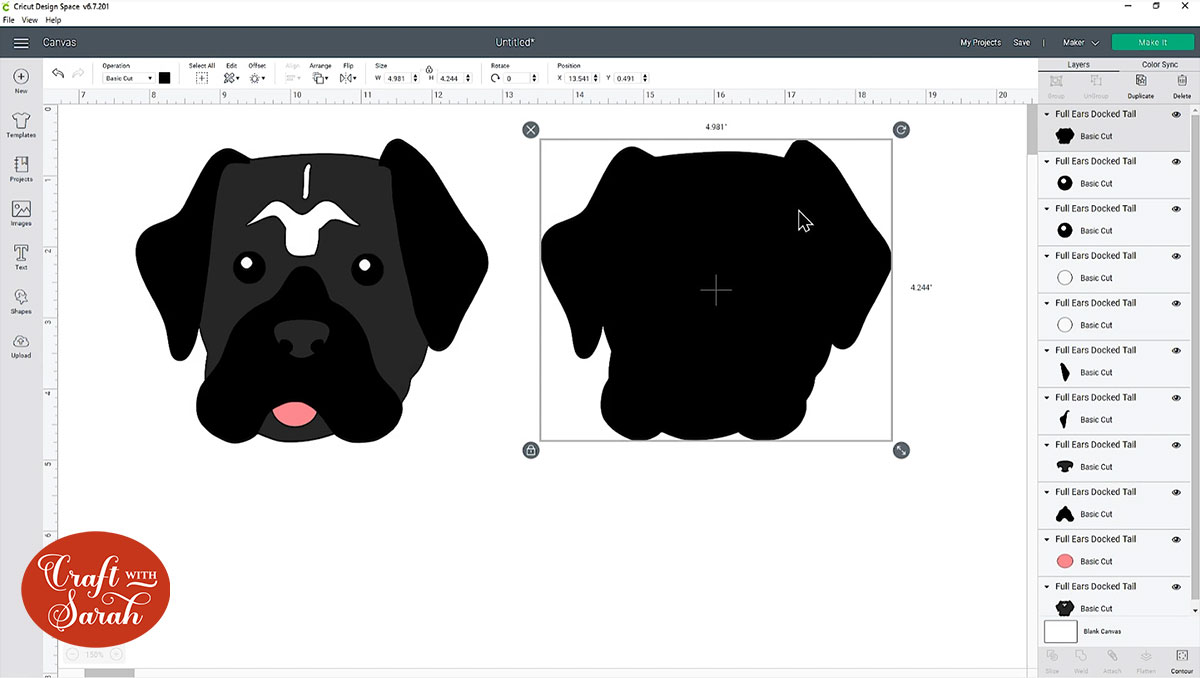 Cane Corso head filled in