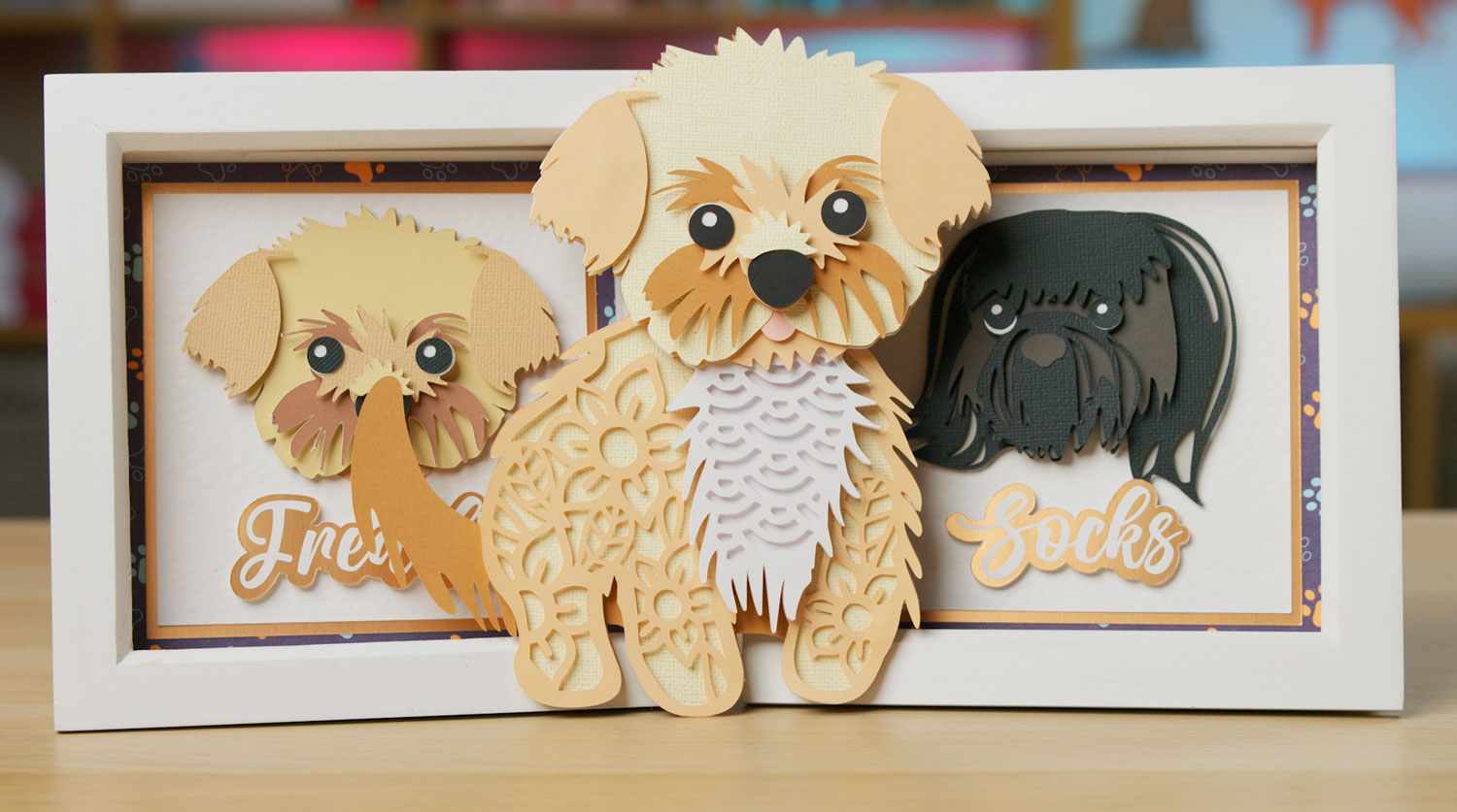 Personalized Mini Shadow Boxes of your Pet